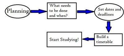 studying_flowchart_2