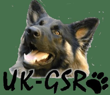 Logo_UK-GSR_transparent_background