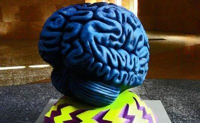 brain-model-crop How to improve your memory